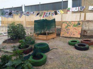 garden at school